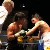 Боксерское шоу в Подольске