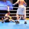 Фотогалерея боксерского шоу в Подольске