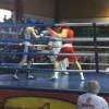 Первый чемпионат СКФО по боксу прошел в Назрани