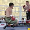 Профессиональный бокс на Красной площади!