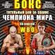Дмитрий Пирог – Геннадий Мартиросян. Бой за титул чемпиона Мира WBO.