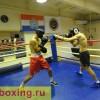Дмитрий Пирог начинает подготовку к бою с Мартиросяном