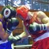 Состав сборной России по боксу на Чемпионат Мира в Баку