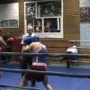 Студенческий бокс: турнир памяти И.С.Багаева в Москве