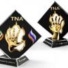 Бои по правилам TNA, кубок TATNEFT. Прямая трансляция (видео)