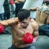 Виктор Ортис возращается на ринг