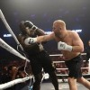 Сергей Харитонов победил Даниэля Сама на турнире ММА Glory 11