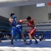 Чемпионат Республики Башкортостан по боксу