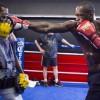 Деонтэй Уайлдер: Чисора боксирует как пони