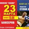 Международный турнир по боксу в Ногинске. Прямая трансляция (видео)