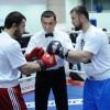 Бои по профессиональному боксу в Краснодаре