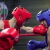 Юношеский и молодежные чемпионаты Мира по боксу пройдут в Санкт-Петербурге