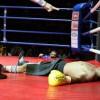 Двойные нокауты в боксе (видео)