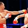 Владимир Кличко нокаутировал Кубрата Пулева в пятом раунде