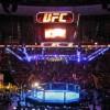 UFC планирует провести турнир в России в 2016 году
