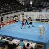 Финальные бои Чемпионата Москвы по боксу-2015 (видео)