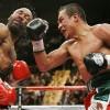 """Бокс в этот день: Как Хуан Мануэль Маркес """"разрушил"""" Касамайора"""