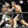 Бокс в этот день: Как Рокки Марчиано стал чемпионом Мира по боксу
