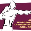Финальные поединки чемпионата мира по боксу 2015