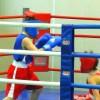 Личное первенство по боксу в Балашихе
