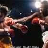 """Бокс в этот день: Как Ларри Холмс не отдал титул чемпиона мира """"белой надежде"""""""