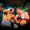 Всемирный боксерский совет (WBC) опубликовал официальную информацию о бое Геннадия Головкина и Сауля Альвареса