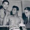 Бокс в этот день: Как Флойд Паттерсон избил Вилли Троя за пять раундов