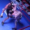В Воронеже состоялись бои по боксу и кикбоксингу