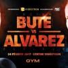Лучиан Буте провет отборочный бой с Элайдером Альваресом несмотря на допинг