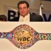 Индейский пояс WBC