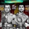 Кто победит 1 апреля в бою Марко Хук – Майрис Бриедис?