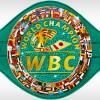 WBC подарит бриллиантовый пояс победителю боя Флойд Мэйвезер – Конор Макгрегор