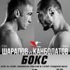 Денис Лебедев посетит боксерский турнир в Воронеже