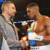 Виталий Кличко виноват в проигрыше Владимира?
