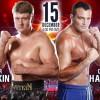 Александр Поветкин победил Кристиана Хаммера по очкам