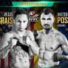 Виктор Постол и Иван Баранчик выйдут на ринг в США
