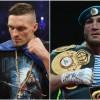 Денис Лебедев должен встретиться с Александром Усиком?