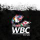 WBC принял новую программу по контролю за весом боксеров