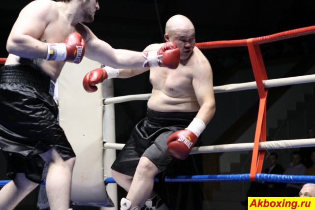 Итоги боксерского турнира в Ногинске (3)