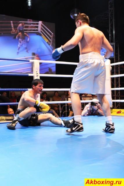Фотогалерея боксерского шоу в Подольске (1)