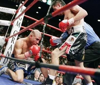Новости бокса (2)