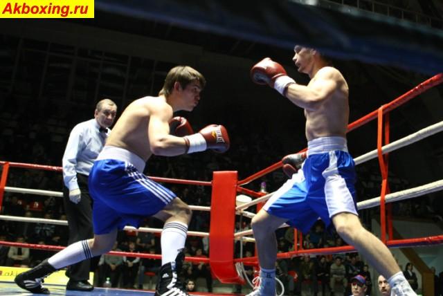 Предварительные результаты боксерского турнира в Ногинске (3)