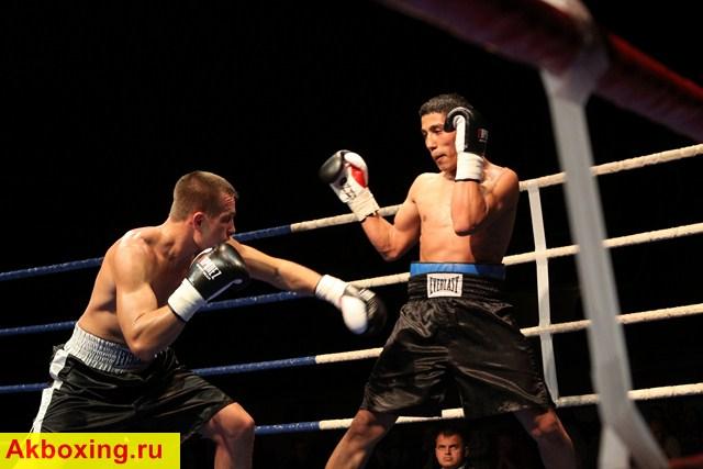 Профессиональный бокс в Барнауле (3)