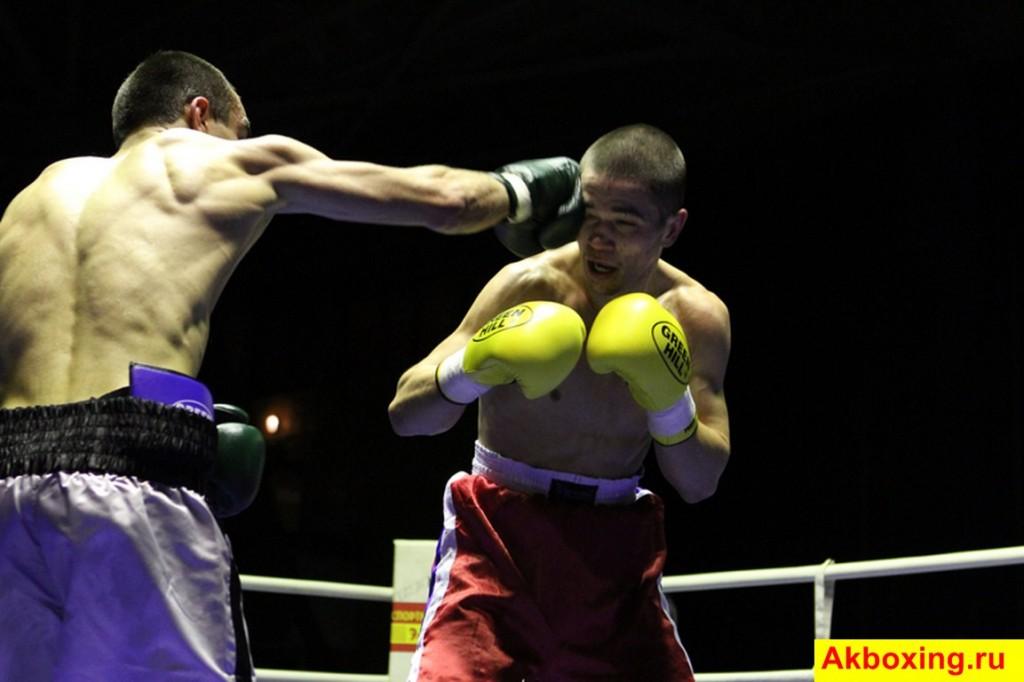 Итоги профессиональных боев в Подольске (фотогалерея) (2)