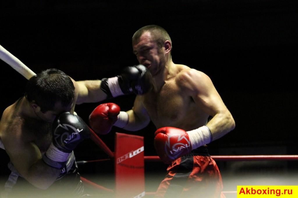 Итоги профессиональных боев в Подольске (фотогалерея) (3)