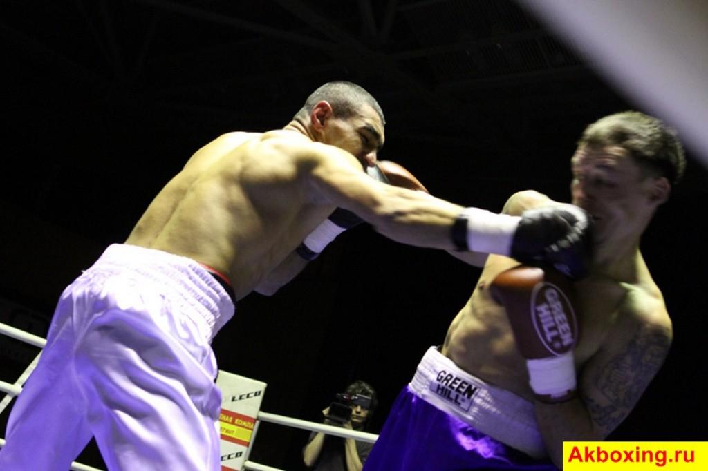Итоги профессиональных боев в Подольске (фотогалерея) (6)