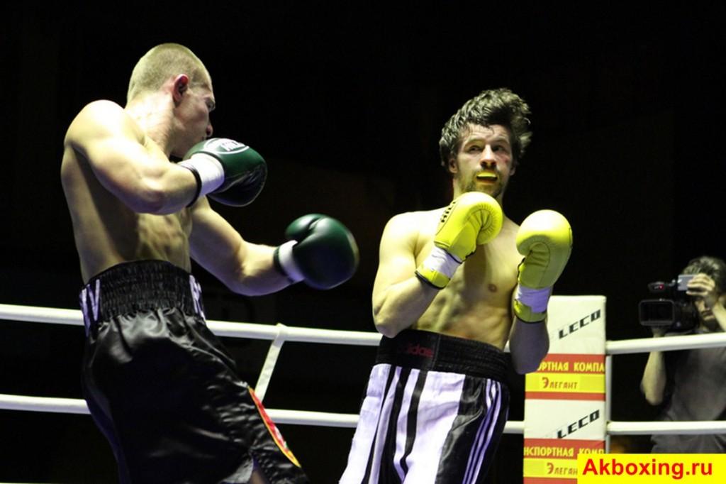 Итоги профессиональных боев в Подольске (фотогалерея) (7)