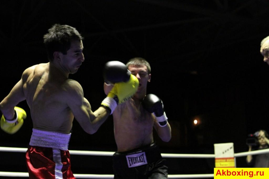 Итоги профессиональных боев в Подольске (фотогалерея) (8)