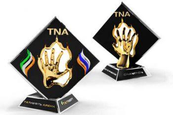 Бои по правилам TNA, кубок TATNEFT. Прямая трансляция (видео) (1)