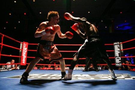 Бокс - это лучшее, что есть в жизни! (видео) (1)